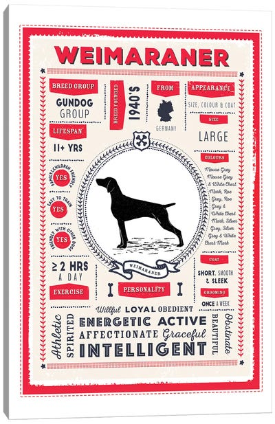 Weimaraner Infographic Red Canvas Art Print