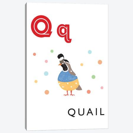 Illustrated Alphabet Flash Cards - Q Canvas Print #PPX284} by PaperPaintPixels Canvas Print