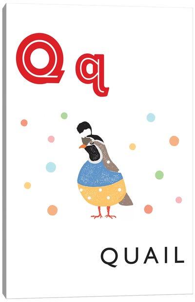 Illustrated Alphabet Flash Cards - Q Canvas Art Print