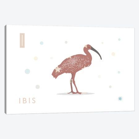 Ibis Canvas Print #PPX45} by PaperPaintPixels Canvas Art Print