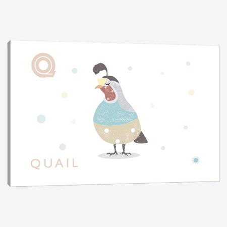 Quail Canvas Print #PPX96} by PaperPaintPixels Canvas Wall Art