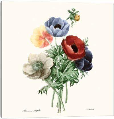 Blushing Bouquet I Canvas Art Print