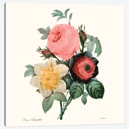 Blushing Bouquet II Canvas Print #PRE2} by Pierre-Joseph Redouté Art Print
