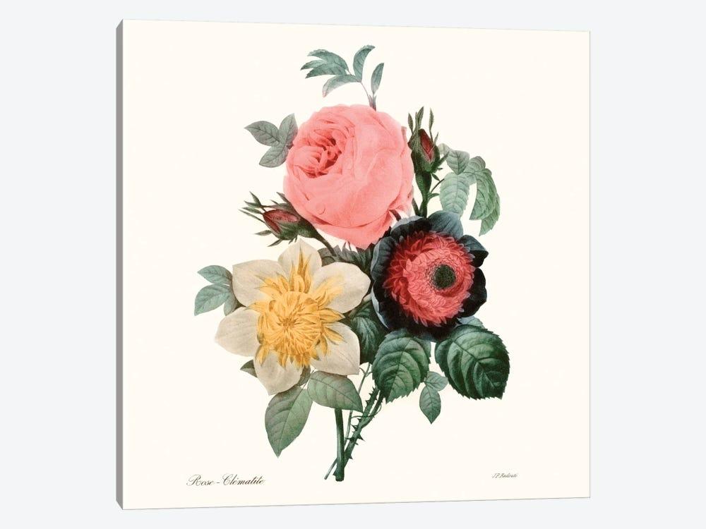 Blushing Bouquet II by Pierre-Joseph Redouté 1-piece Canvas Art