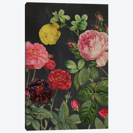 Redoute's Bouquet II Canvas Print #PRE6} by Pierre Redoute Canvas Wall Art