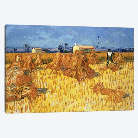 Harvest in Provence, June 1888 Canvas Print #PRE8} by Vincent van Gogh Art Print