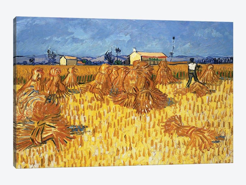 Harvest in Provence, June 1888 by Vincent van Gogh 1-piece Canvas Art