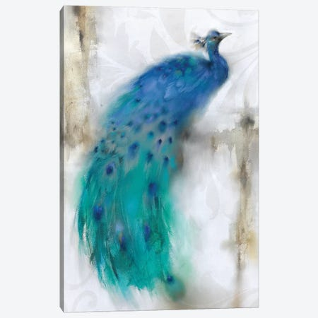 Jewel Plumes I Canvas Print #PRI1} by J.P. Prior Canvas Art Print