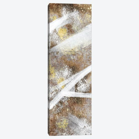 Stoned Distraction I Canvas Print #PRM113} by Marcus Prime Canvas Print