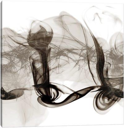 Crossing Neutral Streams II Canvas Art Print