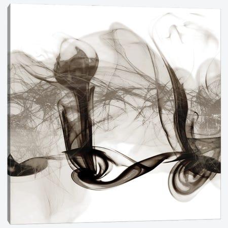 Crossing Neutral Streams II Canvas Print #PRM127} by Marcus Prime Canvas Art Print