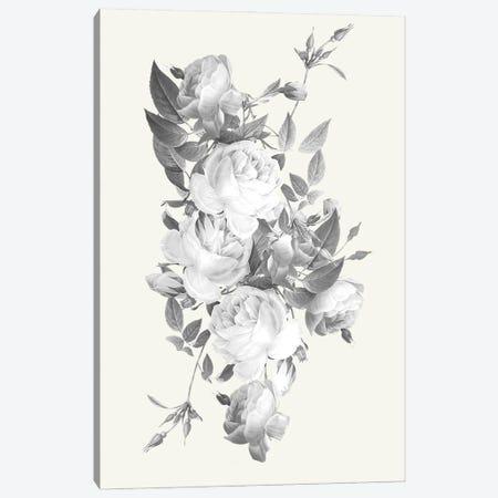 Incognito Florals 3-Piece Canvas #PRM139} by Marcus Prime Canvas Print