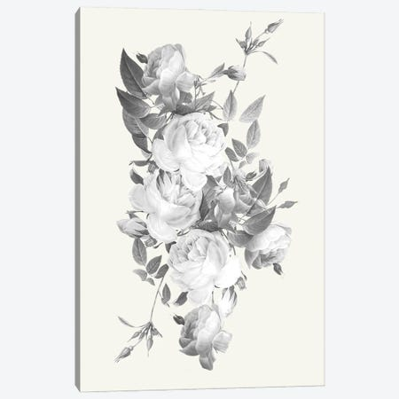 Incognito Florals Canvas Print #PRM139} by Marcus Prime Canvas Print