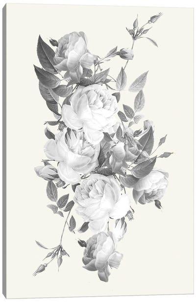 Incognito Florals Canvas Art Print