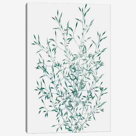 Misty Grass Canvas Print #PRM175} by Marcus Prime Canvas Art