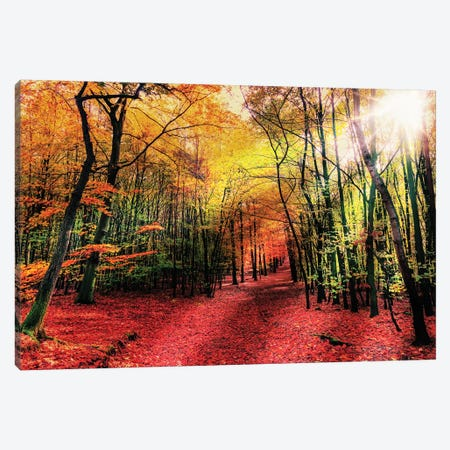 Hansels Adventure Canvas Print #PRM45} by Marcus Prime Art Print