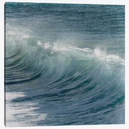 Turbulent Beauty I Canvas Print #PRM7} by Marcus Prime Canvas Artwork