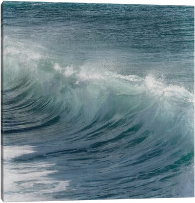 Turbulent Beauty I Canvas Art Print