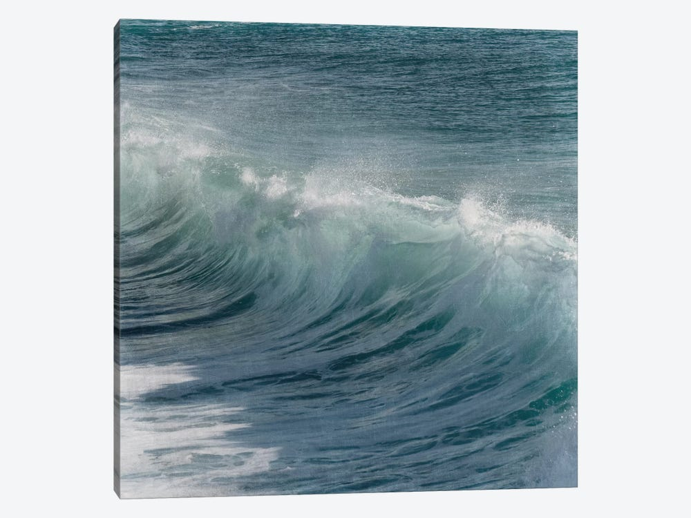 Turbulent Beauty I by Marcus Prime 1-piece Canvas Print