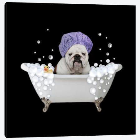Bath Time Bubbles 3 Canvas Print #PRM81} by Marcus Prime Canvas Artwork