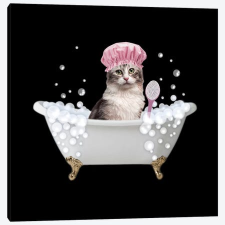 Fun Kitty Bath 3 Canvas Print #PRM84} by Marcus Prime Canvas Print