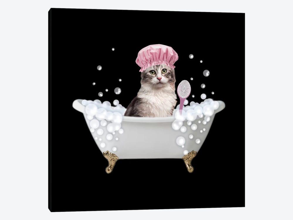 Fun Kitty Bath 3 by Marcus Prime 1-piece Canvas Print