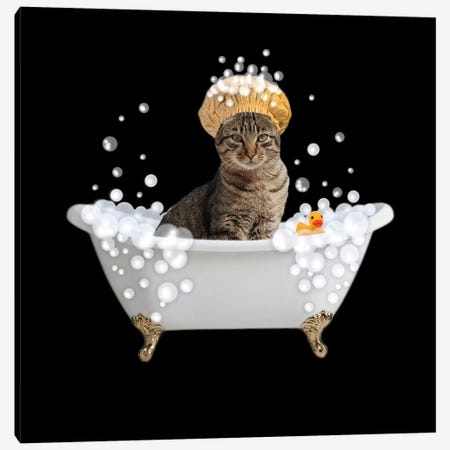 Fun Kitty Bath 4 Canvas Print #PRM85} by Marcus Prime Canvas Art Print
