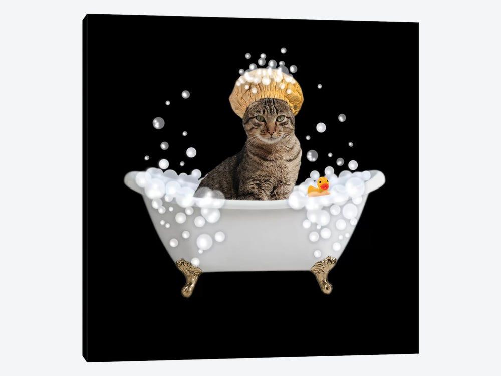 Fun Kitty Bath 4 by Marcus Prime 1-piece Canvas Wall Art