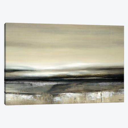 Silver Light Canvas Print #PRO7} by Pablo Rojero Canvas Wall Art