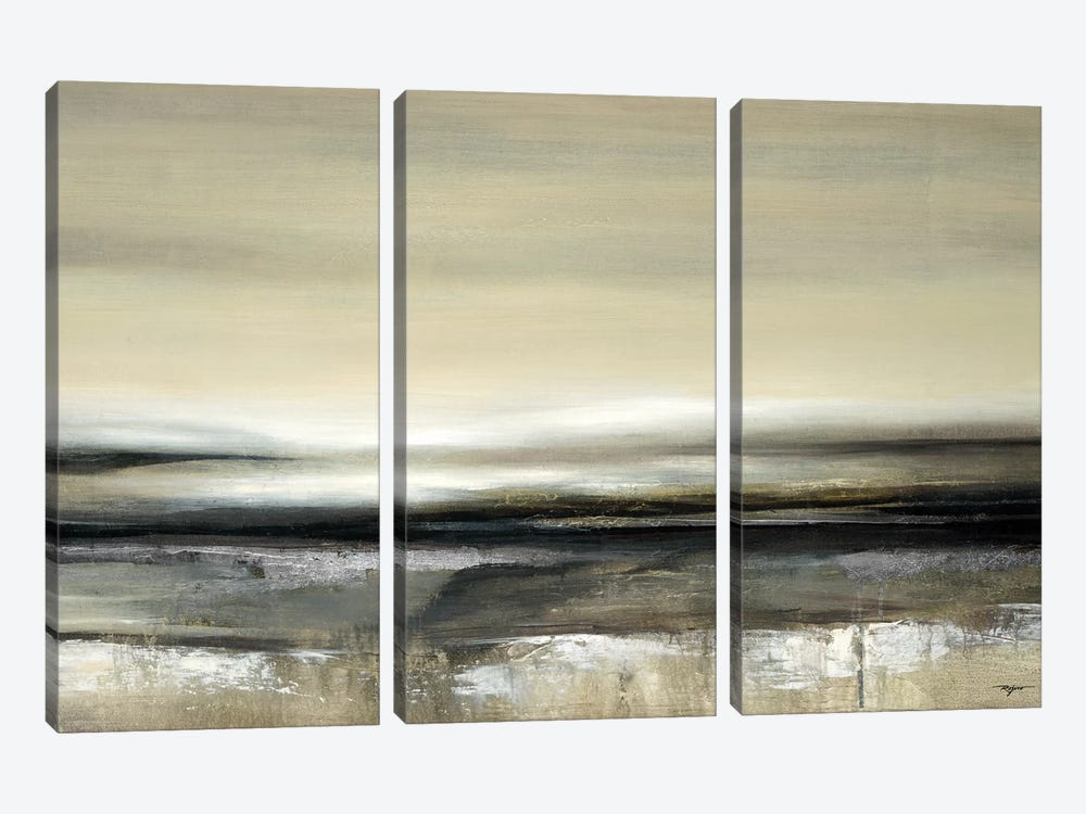 Silver Light by Pablo Rojero 3-piece Canvas Art Print