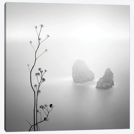 Silhouette And Rocks Canvas Print #PRX17} by Praxis Studio Art Print