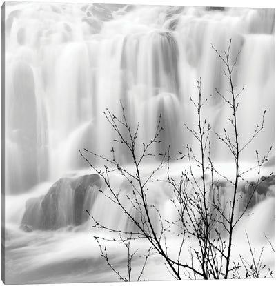 Waterfall Canvas Art Print
