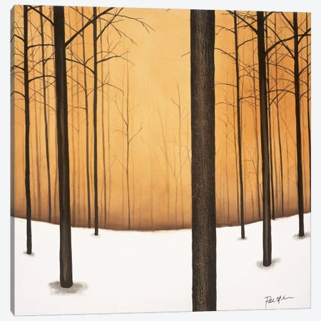 Golden Twilight Canvas Print #PSG13} by Patrick St. Germain Canvas Art