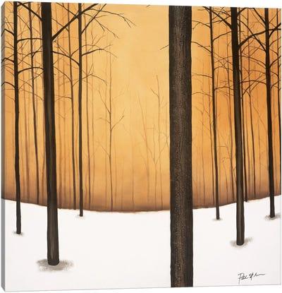 Golden Twilight Canvas Art Print
