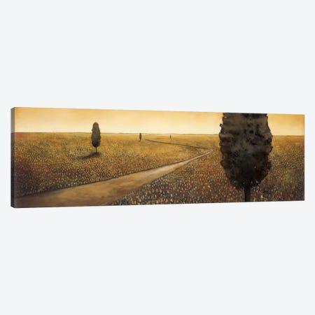 Infinite Dreamscape Canvas Print #PSG15} by Patrick St. Germain Canvas Print