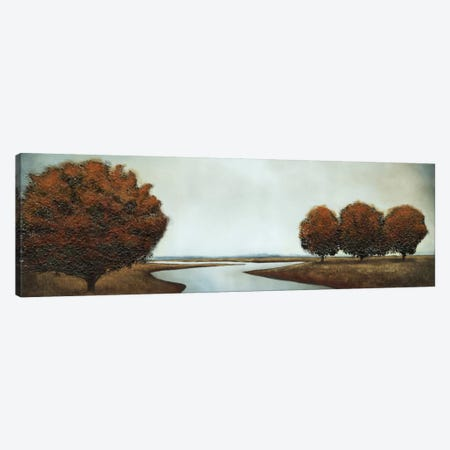 Silver Reflections Canvas Print #PSG22} by Patrick St. Germain Canvas Art Print