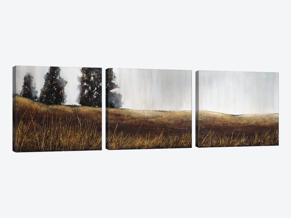 Summer Lights by Patrick St. Germain 3-piece Canvas Art Print