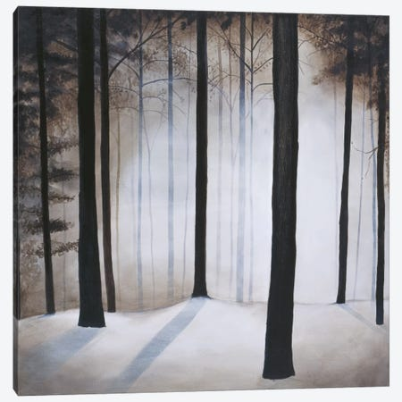 Winter Solace Canvas Print #PSG26} by Patrick St. Germain Canvas Artwork