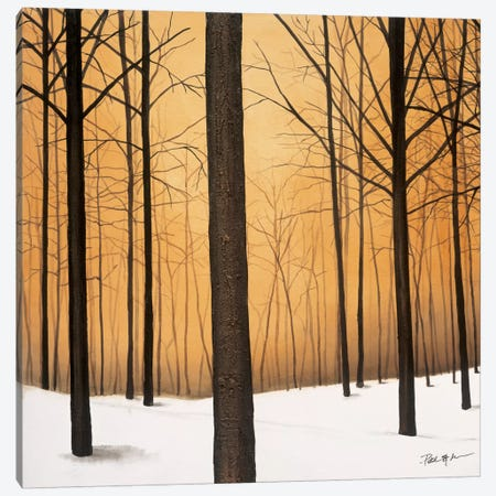 Winter Warmth Canvas Print #PSG27} by Patrick St. Germain Canvas Wall Art
