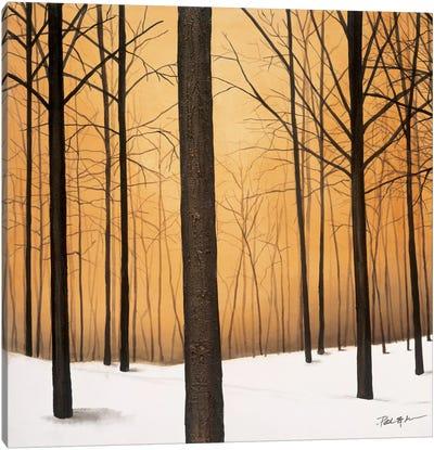 Winter Warmth Canvas Art Print
