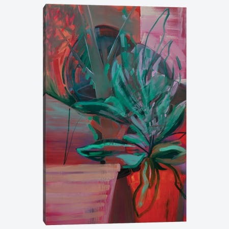 Potted Plant IV Canvas Print #PSK42} by Pamela Staker Canvas Print