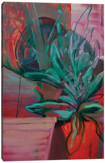 Potted Plant IV Canvas Art Print
