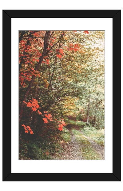 Morning Palette Framed Art Print
