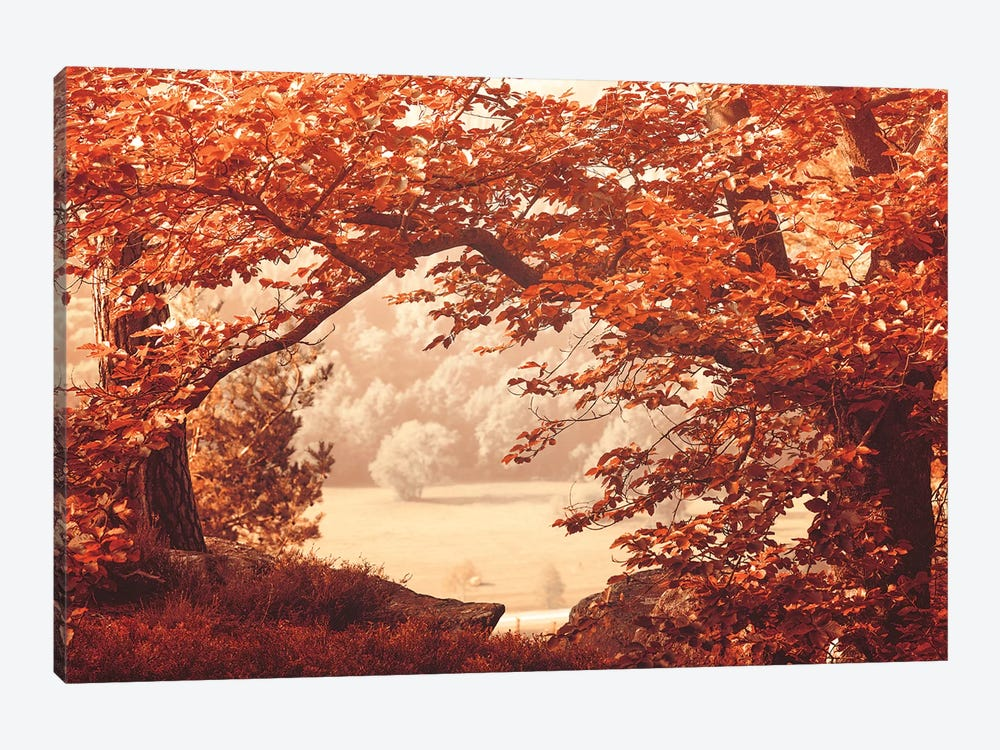 New Leaves by Philippe Sainte-Laudy 1-piece Canvas Wall Art