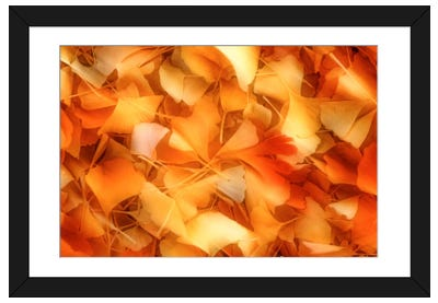 An Autumn Day Framed Art Print