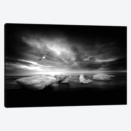 Once It Was A Light Canvas Print #PSL124} by Philippe Sainte-Laudy Canvas Wall Art