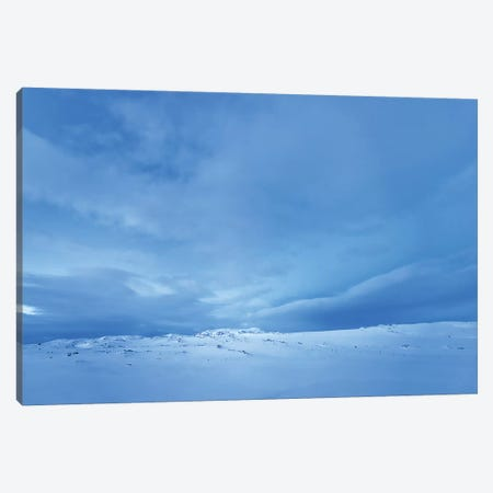 One Morning Blue Steel Canvas Print #PSL125} by Philippe Sainte-Laudy Canvas Wall Art