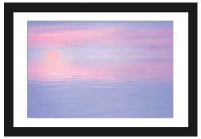 Pink Spirit Framed Art Print