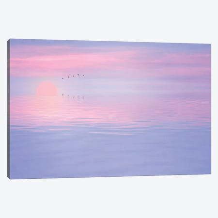 Pink Spirit Canvas Print #PSL129} by Philippe Sainte-Laudy Canvas Art Print