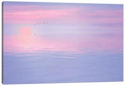 Pink Spirit Canvas Art Print